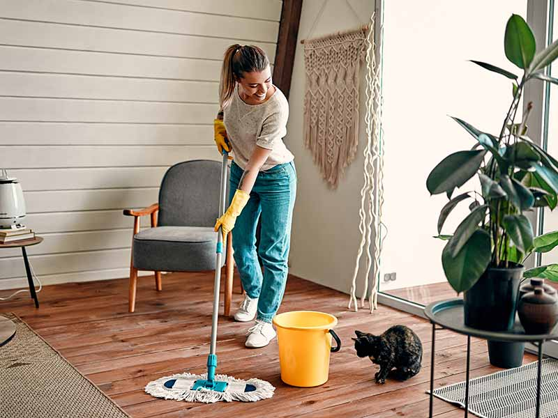 Maid Zen Cleaning Services of Northeast Texas